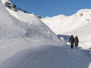 Wanderweg  Nebelhorn