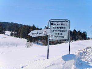 Großer Wald bei Wertach