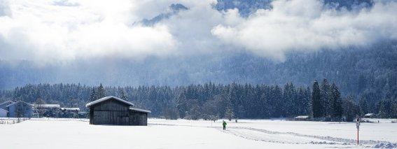 Winter auf den Wiesen
