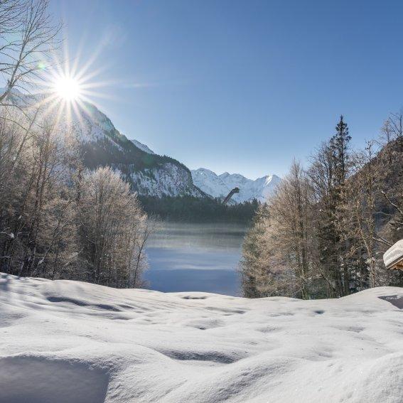 Winter am Freibergsee