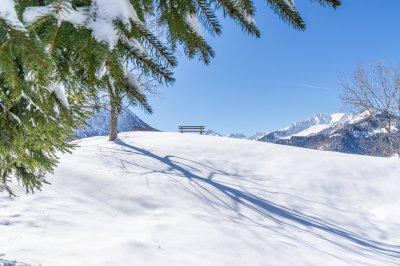 Winterstimmung am Moorweiher