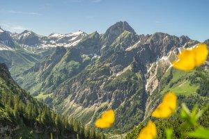 Nebelhorn Sommer