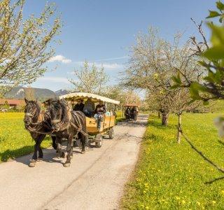 Mai in Oberstdorf