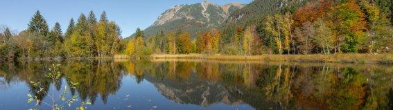 Moorweiher im Herbst