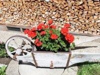 Blumen-Schubkarre