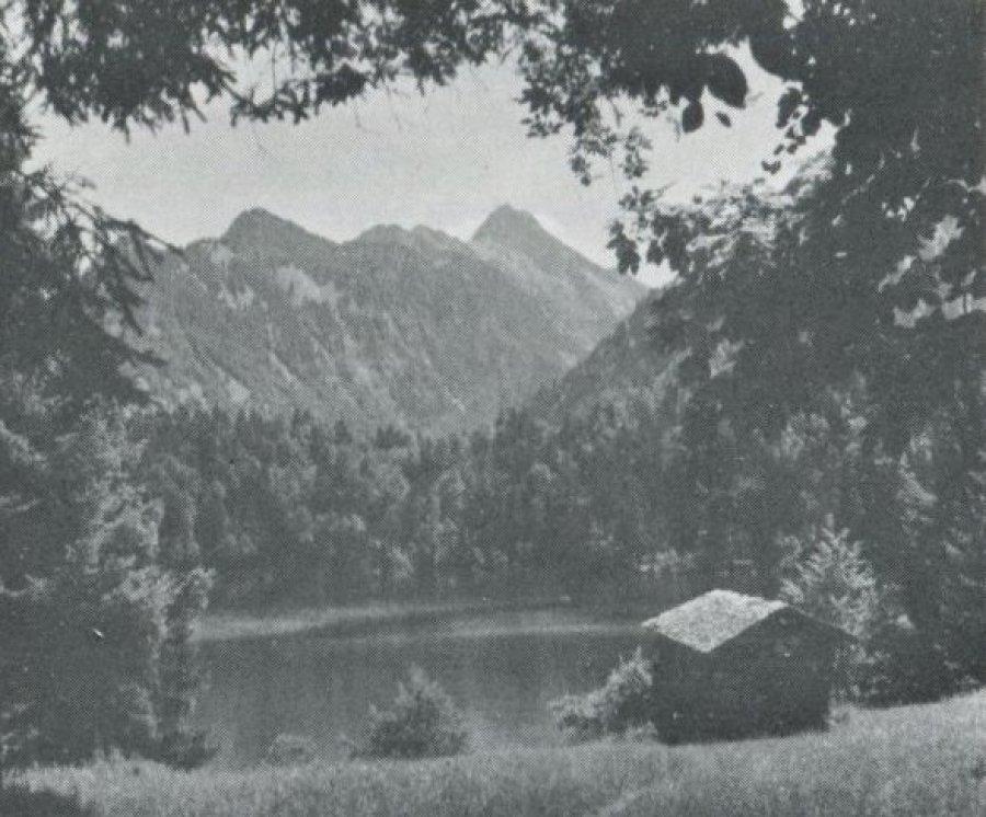 Freibergsee - Heft 1