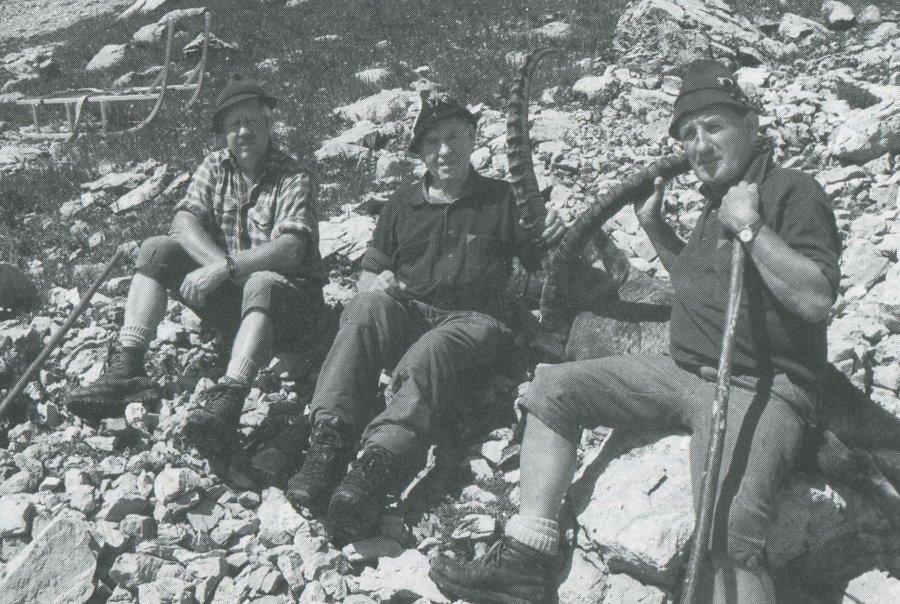 Alpensteinbock - Heft 35