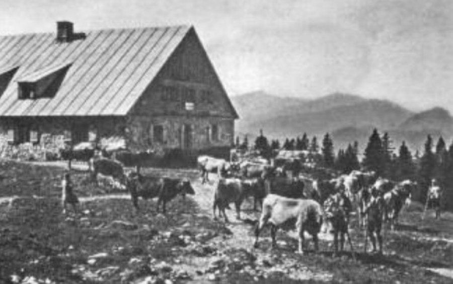 100 Jahre - Heft 66