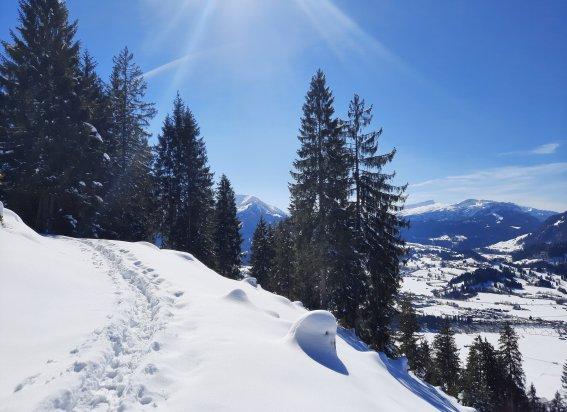 Walraffweg Winter