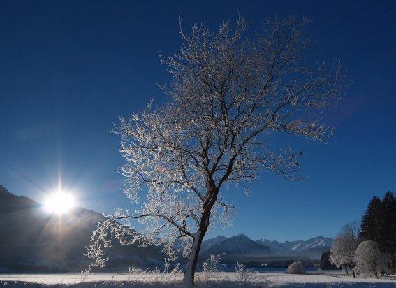 Phantastischer Wintertag in Rubi