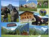 Gutenalpe Collage