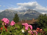 Blick Haus Alpentraum