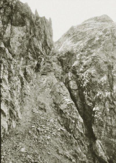22-HW.Bockkarkopf
