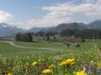 Oberstdorfer Frühling