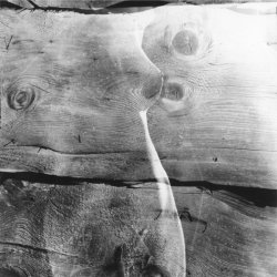 Alt Holz - Rudolf Schnellbach