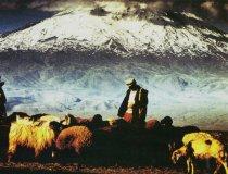 Arno Pürschel, Hirten am Ararat