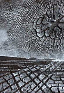 Max Schmelcher, Moor