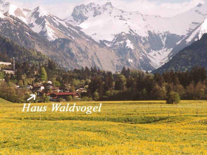 Balkonblickblick zum Schattenberg