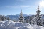 Kalter Wintermorgen nach endlosem Schneefall