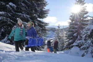 Sonne, Schnee und blauer Himmel: perfektes Drio!