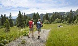 Los geht's Deine Tour durch die Allgäuer Alpen.
