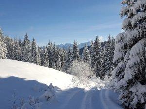 Ein Wintermärchen auf 1350m