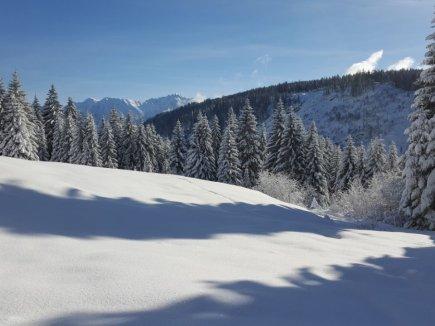 Weiß, Weißer, Winter