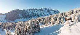 Weit und breit nur die verschneite Natur der Allgäuer Alpen