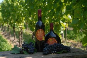 Weingut Dorsch - Wein und Trauben DSC 0245