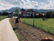 Bienen -und Blumenstreifen im Wellnesshof Blenk - 5 Sterne Ferienwohnungen in Wertach im Allgäu