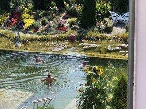 Badesee im Wellnesshof Blenk - 5 Sterne Ferienwohnungen in Wertach im Allgäu