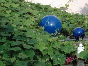 Garten im Wellnesshof Blenk - 5 Sterne Ferienwohnungen in Wertach im Allgäu