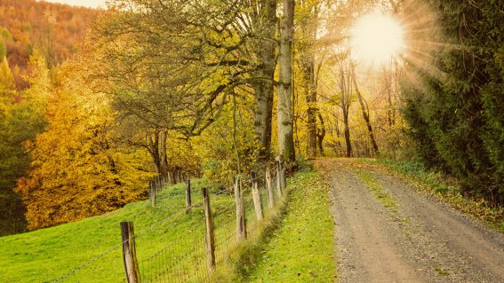 Herbstwanderweg