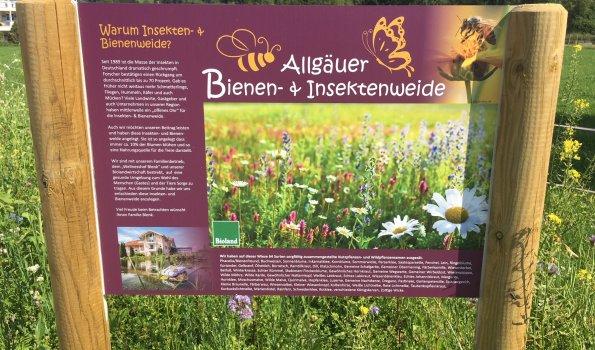 Allgäuer Bienen- und Insektenweide
