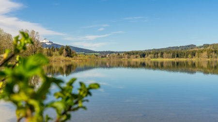 Idylle am Grüntensee - Wellnesshof Blenk - 5 Sterne Ferienwohnungen in Wertach im Allgäu
