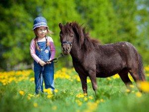 Kind mit Pferd - Wellnesshof Blenk