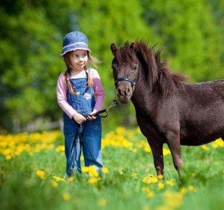 Kind mit Pferd | Wellnesshof Blenk - 5 Sterne Ferienwohnungen in Wertach im Allgäu