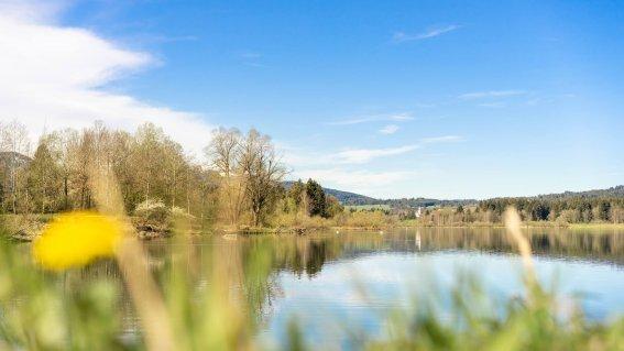 Frühlinghafte Atmosphäre - Wellnesshof Blenk - 5 Sterne Ferienwohnungen in Wertach im Allgäu