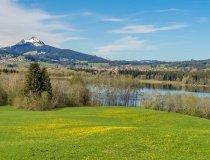 Frühlingswiesen- Wellnesshof Blenk - 5 Sterne Ferienwohnungen in Wertach im Allgäu