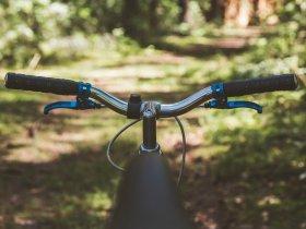 Mit dem Fahrrad durch den Wald