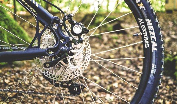Fahrradtour Grüntensee