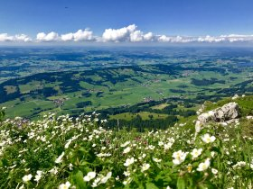 Grünten - Wellnesshof Blenk - 5 Sterne Ferienwohnungen in Wertach im Allgäu