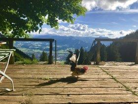 Terrasse Grüntenhaus - Wellnesshof Blenk - 5 Sterne Ferienwohnungen in Wertach im Allgäu
