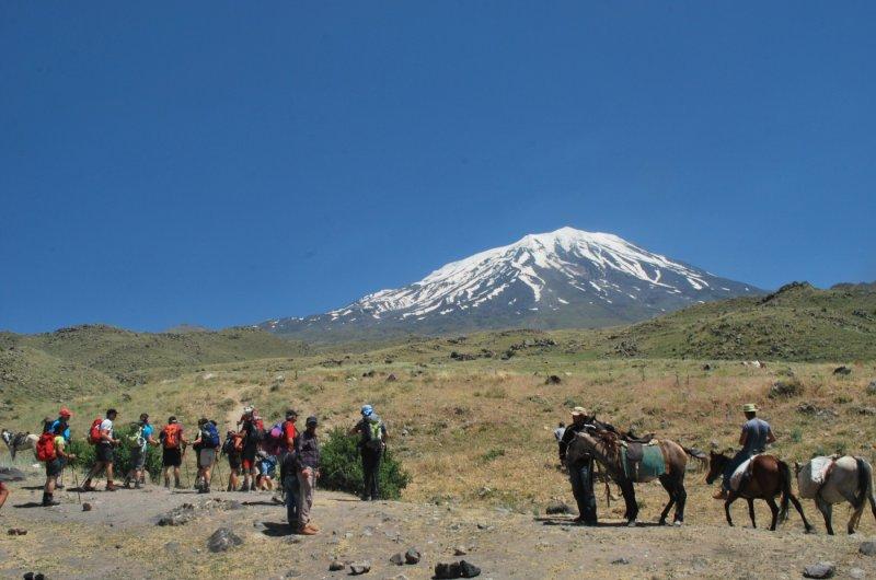 Horses on Ararat