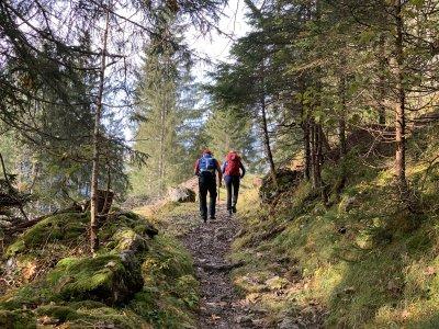 Weg zur Krinnenspitze