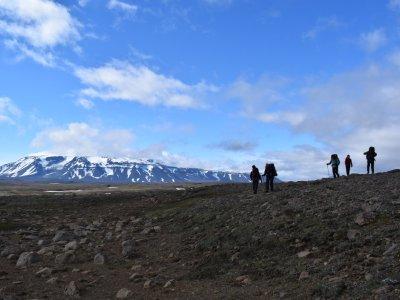 Island Gruppe