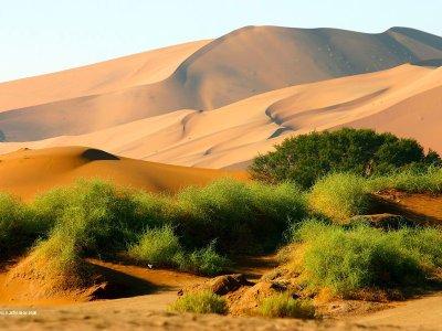 Tag 6 namibia