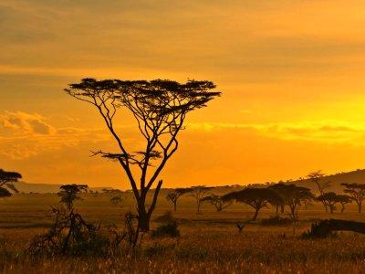 Tag 2 namibia