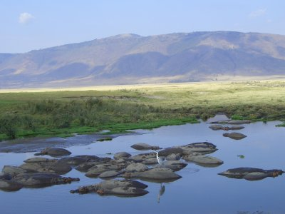 Ngorongoro 7