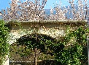 Frühlingswandern